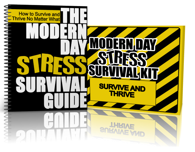 3D_Stress_Guide-Kit2.jpg